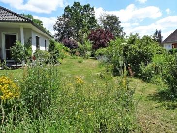 2019-06-28 LüchowSss Garten Wieseninseln (1)