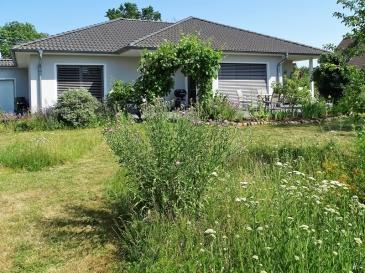 2019-06-30 LüchowSss Garten Wieseninseln (1)