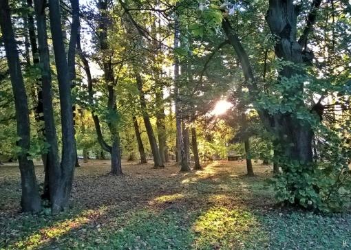2019-10-12 Tschechien Jehvany (12) Hotel Vila Olga Park