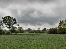 2019-11-06 b. LüchowSss Regenwetter