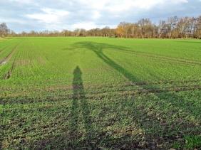 2019-12-09 b. LüchowSss unterwegs (1) Schatten