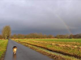 2020-01-13 zw. Lüchow + Wustrow (2) Bongo u. Regenbogen über Lüchow