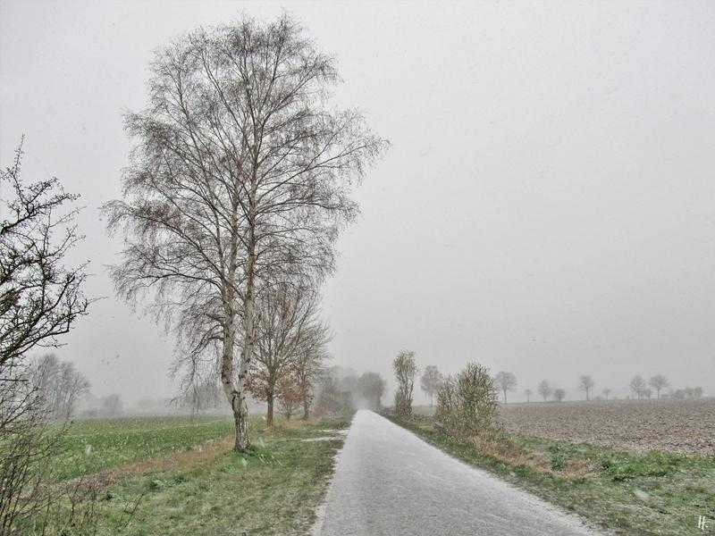 2020-03-30 LüchowSss 8 Uhr morgens Schnee (1)
