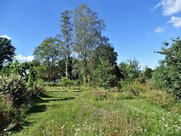 2020-07-30 LüchowSss Garten Wieseninseln (3)