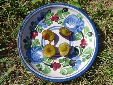 2020-08-05 LüchowSss Garten Wildpflaume aufgeschnitten auf Teller (1)