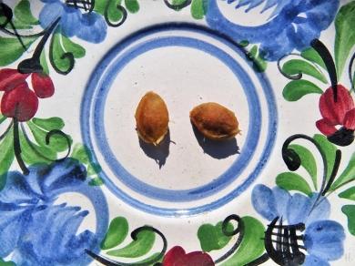 2020-08-05 LüchowSss Garten Wildpflaume Kerne auf Teller