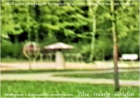 2020-09-30 ABC-Etüden Pilze+traurig+schlafen (Spielplatz Lüchow Schützenpark 60er Jahre 800×600)