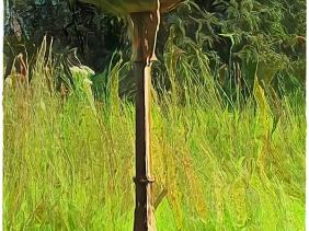 2020-10-27 LüchowSss Garten Hausperlinge (Passer domesticus) beim Baden - 2m neben mir (bearb. m. Topaz-Filter)