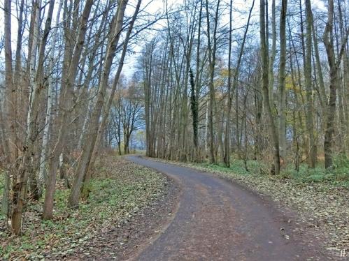 2020-12-07 b.LüchowSss Spaziergang Weg