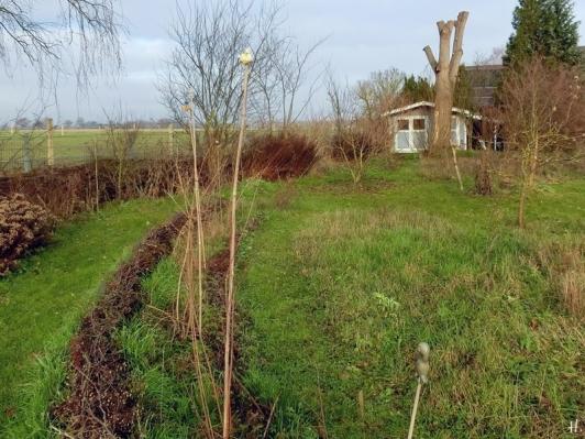 2021-01-02 LüchowSss Garten m. Wieseninseln + Bogen mit neugepflanzten Jungsträuchern + -bäumen + Eiche