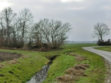 2021-01-10 b.LüchowSss gefüllter Wassergraben(1)
