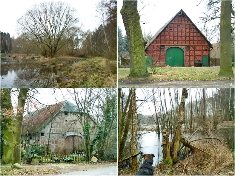 2011-02-10 Klein Breese (1x4)