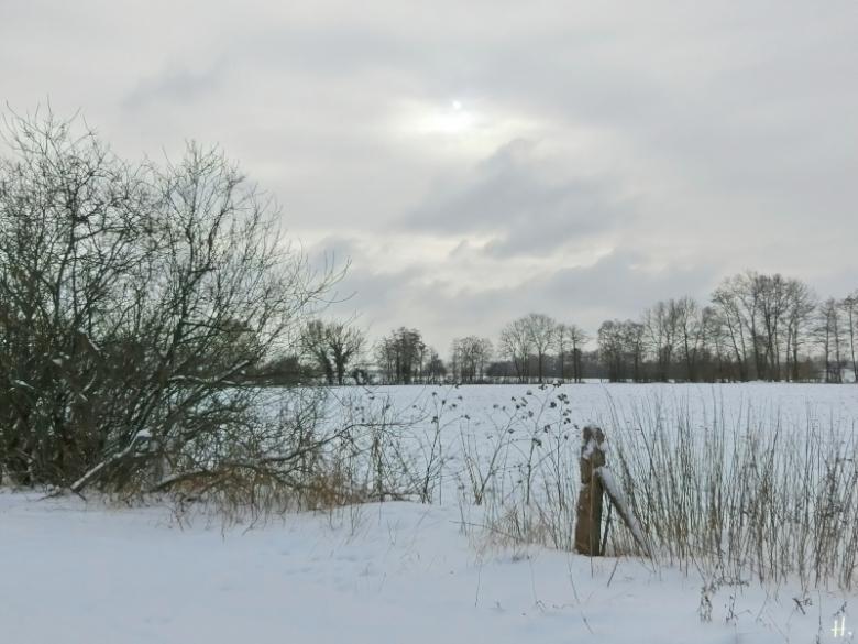 2021-02-09 b. LüchowSss Spaziergang m. leichter Ahnung v. Sonne