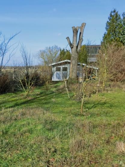 2021-02-19 LüchowSss Garten (1A)