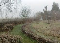 2021-03-02 LüchowSss morgens Garten Nebel + Frost Wieseninseln