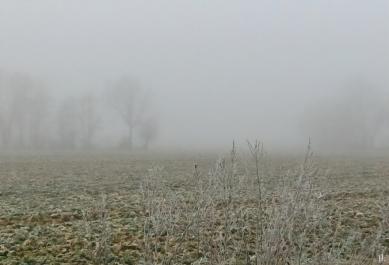 2021-03-02 LüchowSss morgens Nebel u. Frost, Feld