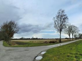 2021-03-13 LüchowSss Spaziergang (4)