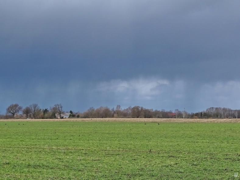 2021-03-15 LüchowSss Feldmark unter Regenwolken (1)