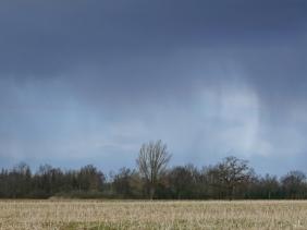 2021-03-15 LüchowSss Feldmark unter Regenwolken (5)
