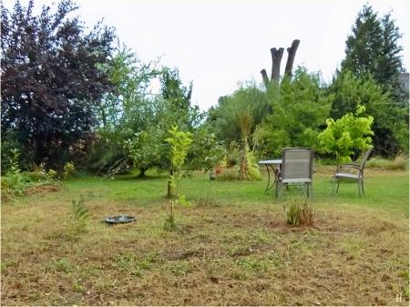 2021-08-20 LüchowSss Garten Wieseninsel, gemäht