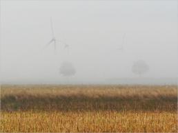 2021-08-21 LüchowSss 6h30-7h Windräder im Nebel