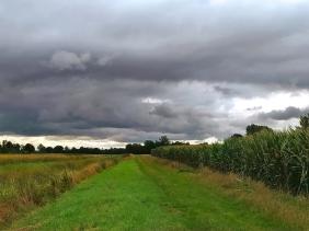 2021-08-29 b. Lüchow Königshorster Kanal Spaziergang unter Regenwolken
