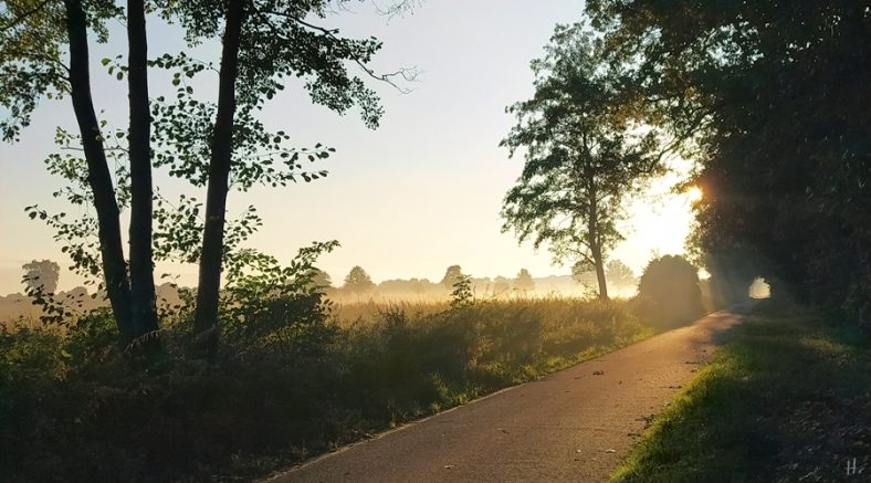 2021-09-26 b.LüchowSss Morgen-Spaziergang 7-8h Handy (7)